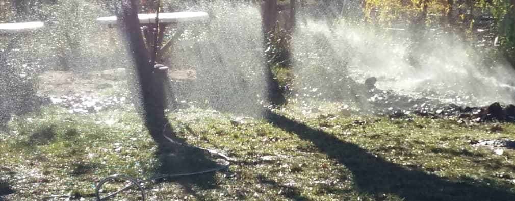 Riego por goteo qu es c mo funciona ventajas y desventajas for Aspersores para riego jardin