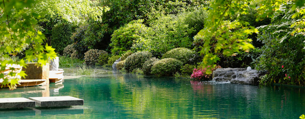 بركة مائية تنفيذ Jürgen Kirchner Wasser + Garten