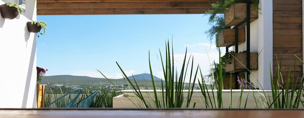 Terrasse von Mexikan Curious