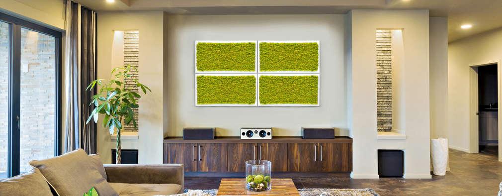 Giardino verticale come introdurre la natura in casa - Giardino verticale in casa ...