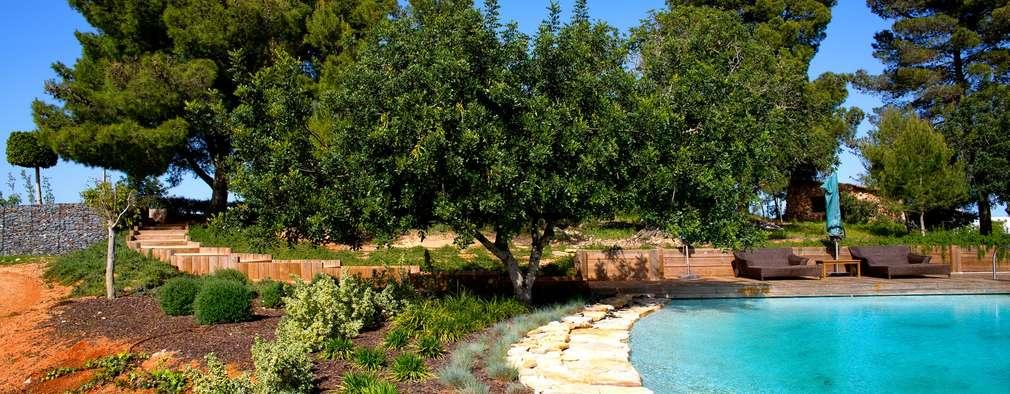 Projeto de Jardim para Quinta com Piscina: Jardins de fachada  por Jardíssimo