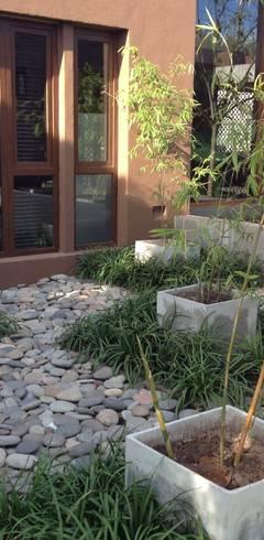juego de plantas en damero: Jardines de estilo  por BAIRES GREEN