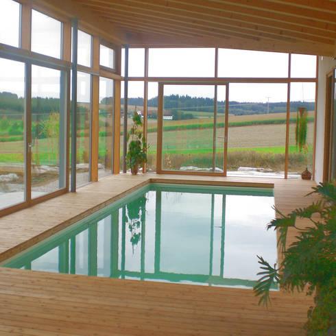 Indoor-Pool:  Pool von Moserarchitekten