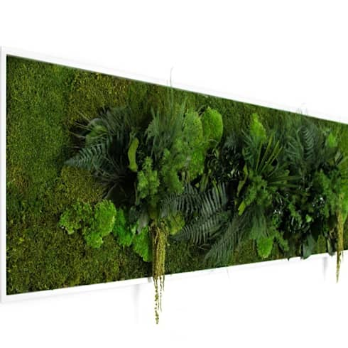 Pflanzenbild 140x40cm: moderne Esszimmer von FlowerArt GmbH | styleGREEN