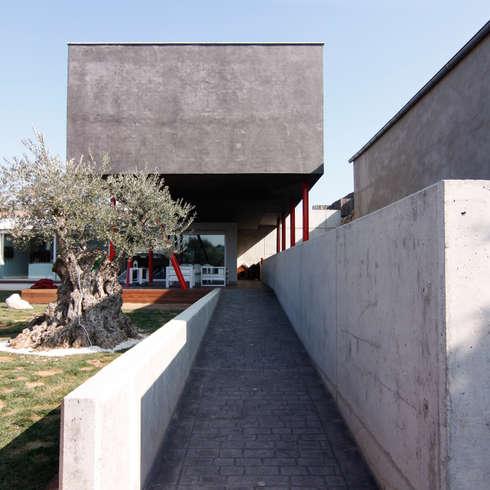 minimalistische Häuser von eidée arquitectes S.L.P.