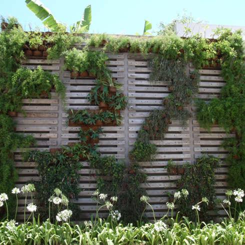 moderner Garten von Denise Barretto Arquitetura