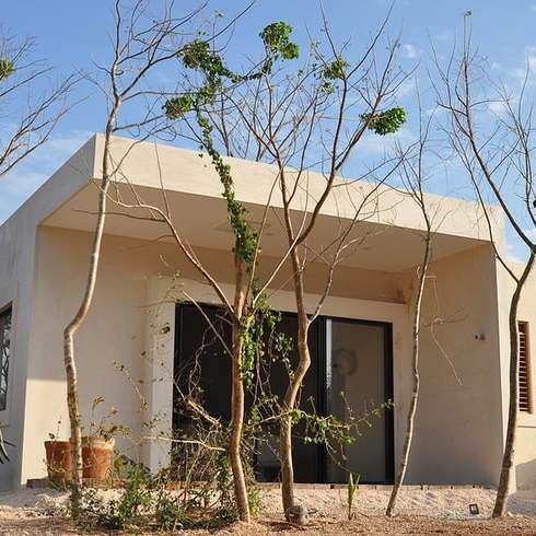 Casas de estilo topical por Degetau Arquitectura y Diseño