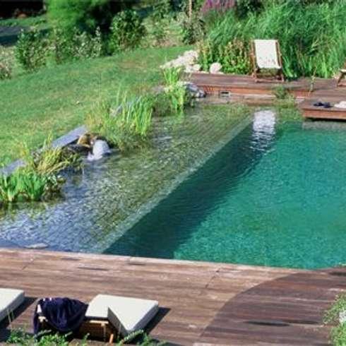 landelijk Zwembad door arqs.insitu