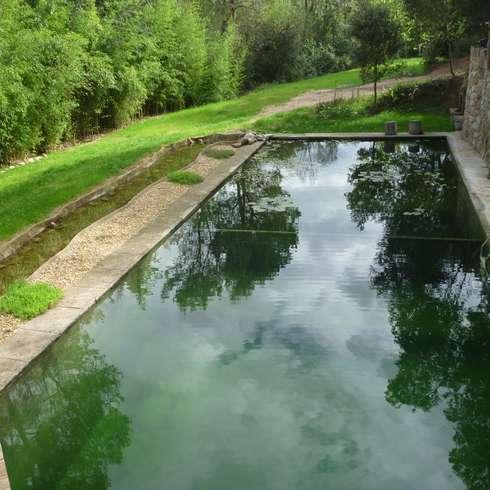 landelijk Zwembad door jardinista
