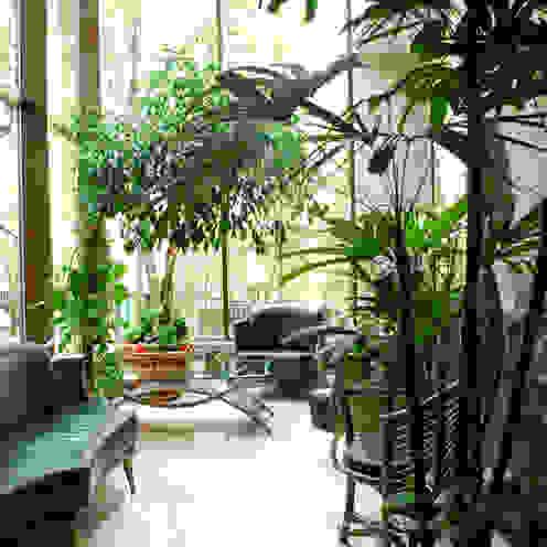 Загородный дом Зимний сад в стиле модерн от Армен Мелконян Модерн