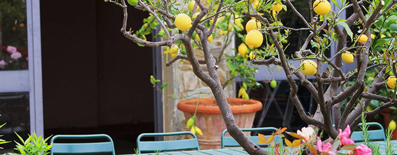 Phillys Interior Design Jardin méditerranéen
