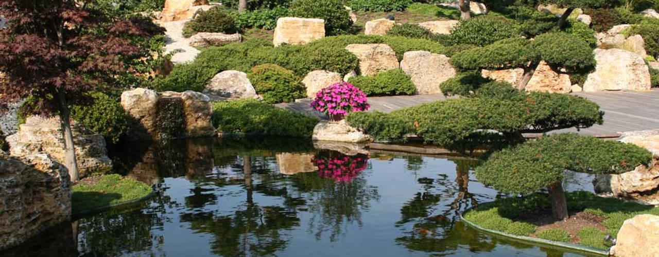 Сад в азиатском стиле от Kirchner Garten & Teich GmbH Азиатский