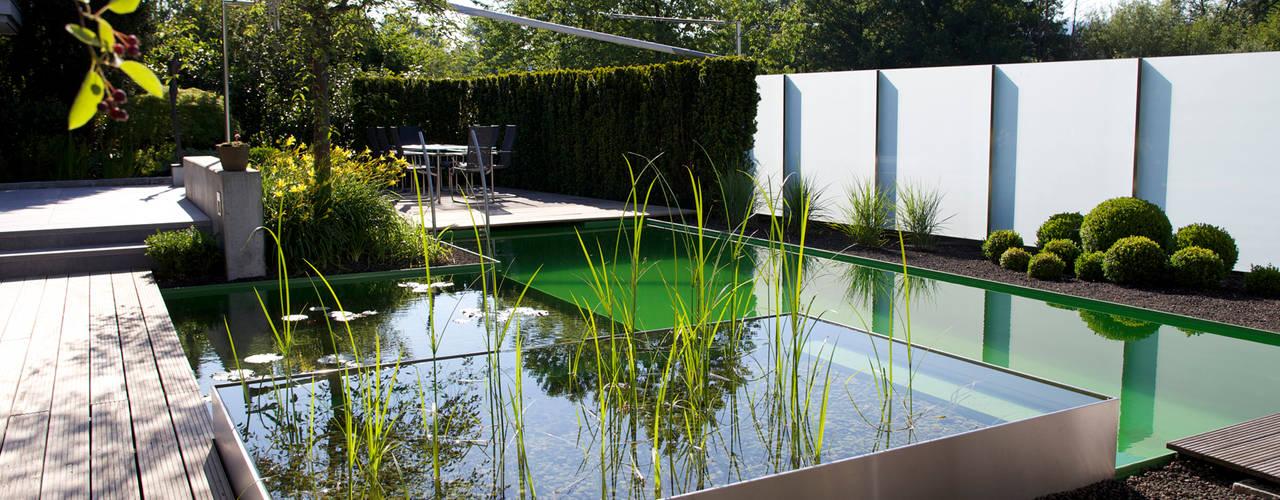 Balena Pools von Balena GmbH Modern