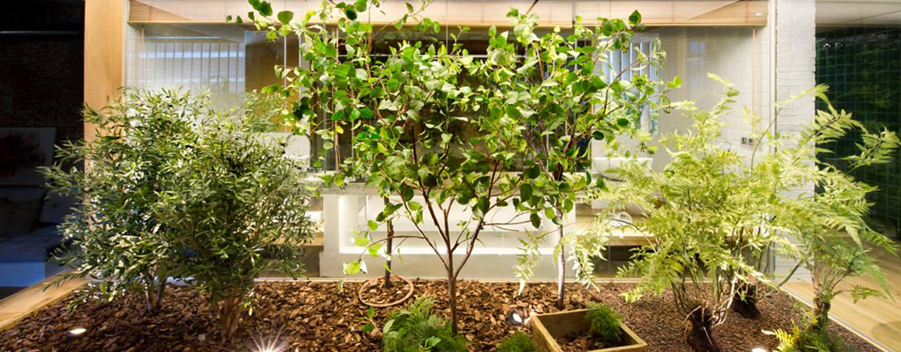 Jardines de invierno de estilo rústico por Egue y Seta