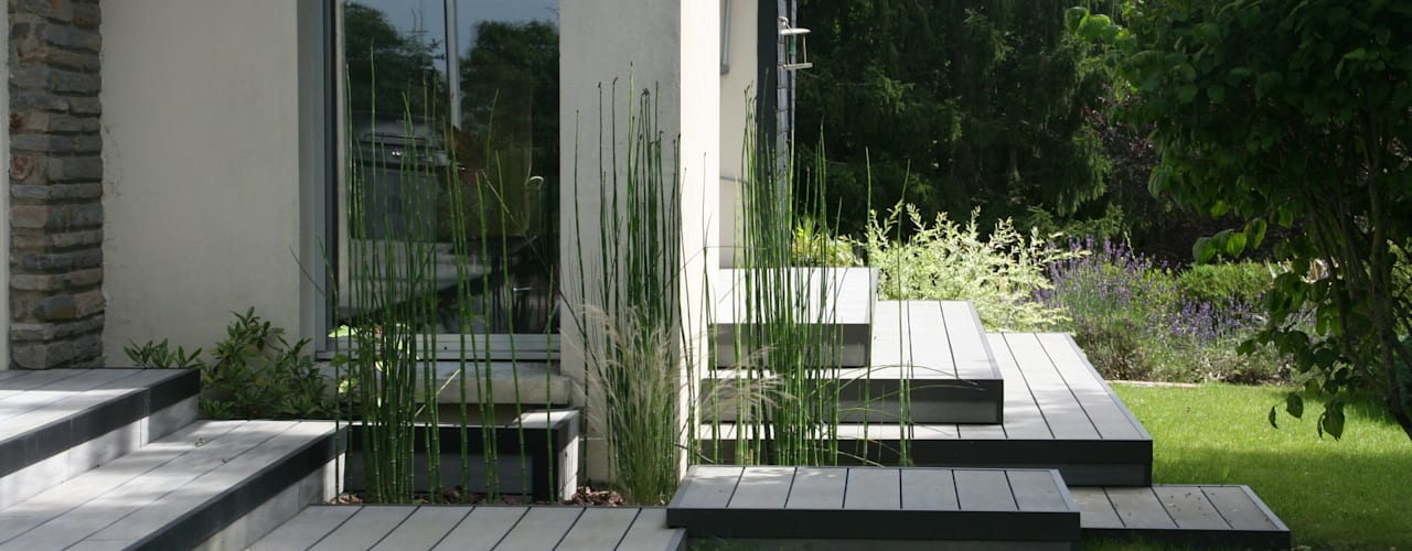 Vue sur le passage 3 plateformes avec equisetum hyemale (prèles) Jardin moderne par EURL OLIVIER DUBOIS Moderne