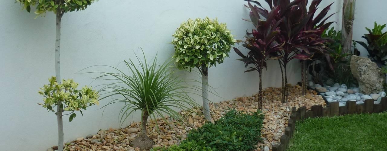 Jardines de estilo  por VIVERO CUMBRES ELITE,