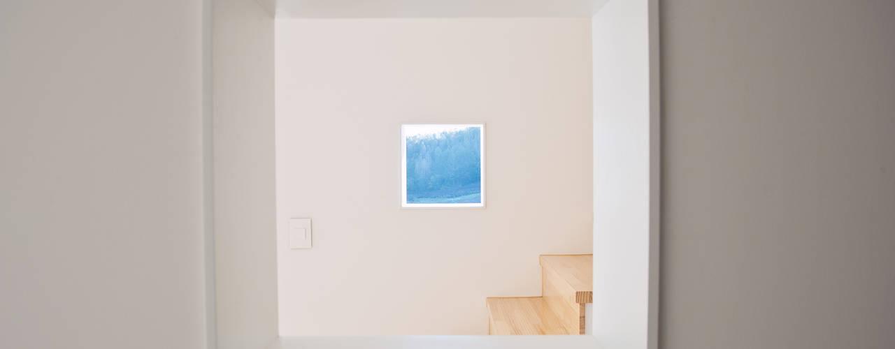 3015 architects의  창문
