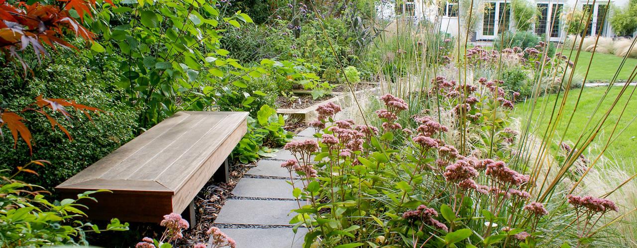 Contemporary Modern Family Garden Modern garden by Rosemary Coldstream Garden Design Limited Modern