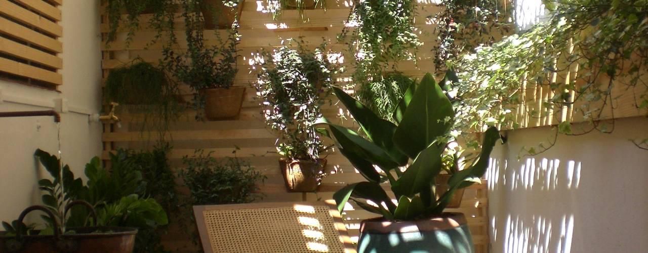Jardines de invierno de estilo  de Estudio Amélia Tarozzo