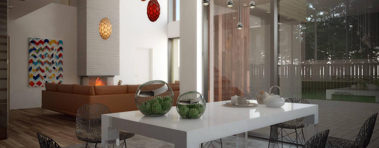 Salas de estar escandinavas por ALEXANDER ZHIDKOV ARCHITECT