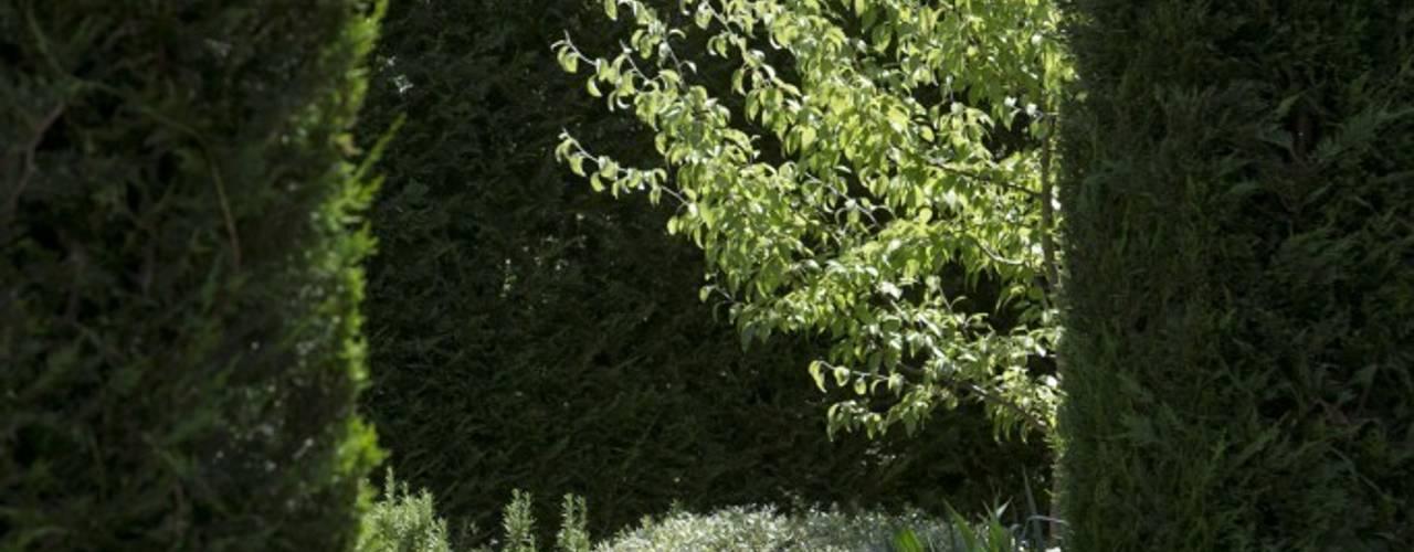 Сад : Сад  в . Автор – Студия 'ART Story',