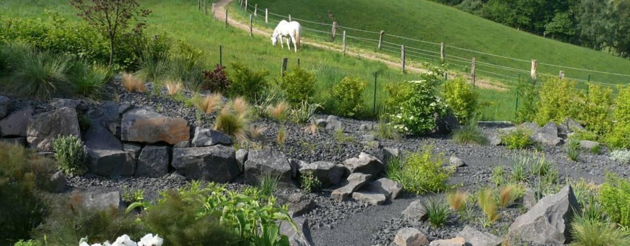 Modern garden by Crämer & Wollweber Garten- und Landschaftsbau GmbH Modern