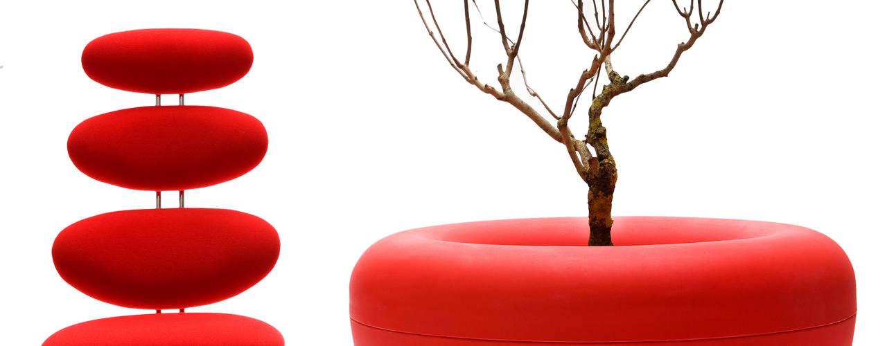 modern  by IOTA Garden and Home ltd, Modern