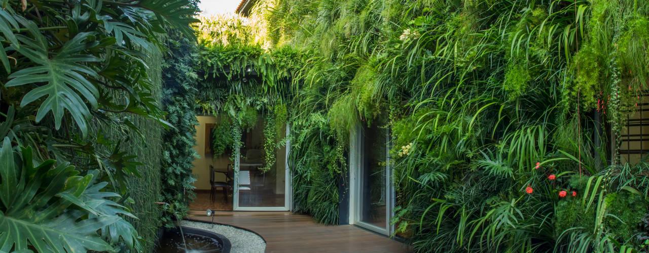 Quadro Vivo Urban Garden Roof & Verticalが手掛けたカントリー, カントリー