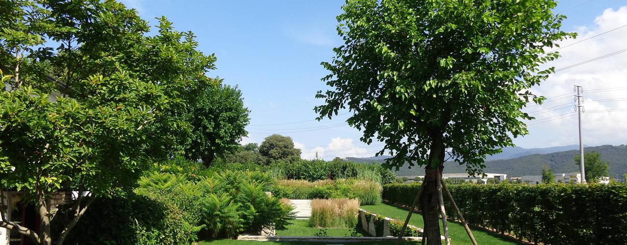 25 alberi da giardino da scegliere per piccoli spazi - Alberi particolari da giardino ...