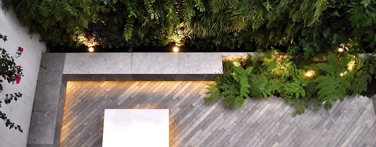 Jardin moderne par DF ARQUITECTOS Moderne