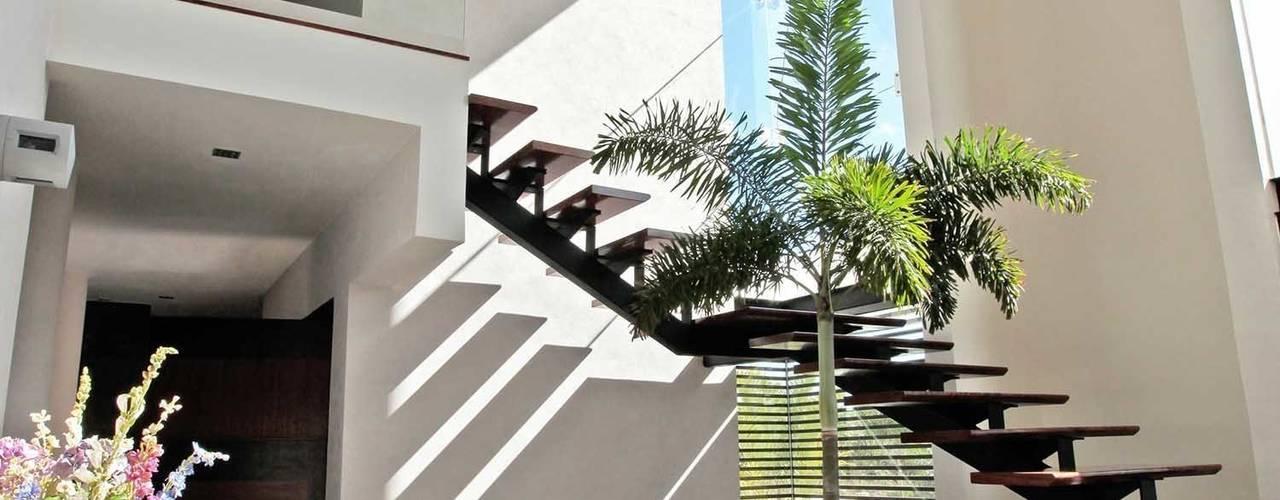 Pasillos, vestíbulos y escaleras de estilo moderno de AMEC ARQUITECTURA Moderno