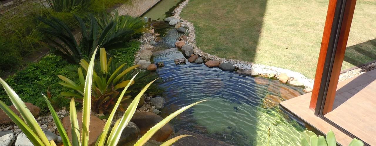 Tropische tuinen van Flávia Brandão - arquitetura, interiores e obras Tropisch