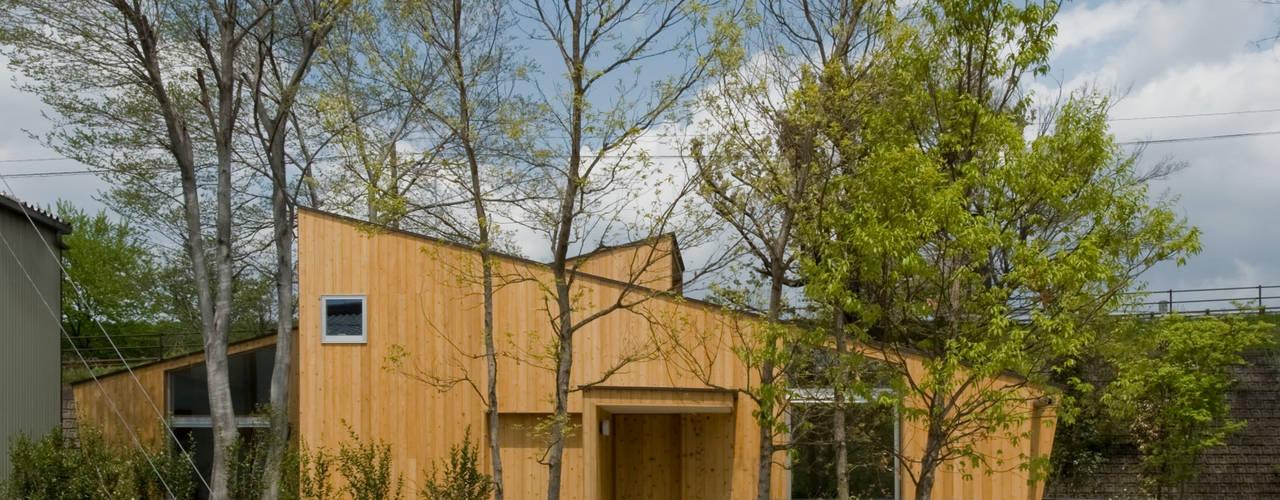 木立の家 モダンな庭 の IBC DESIGN モダン