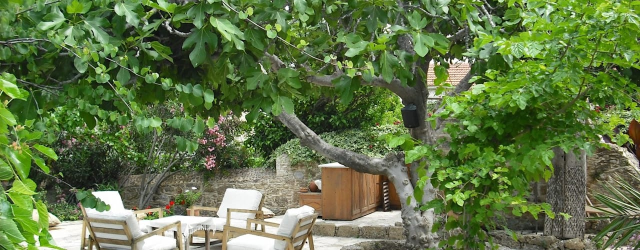 Jardines minimalistas de Revelation-Fengshui Minimalista