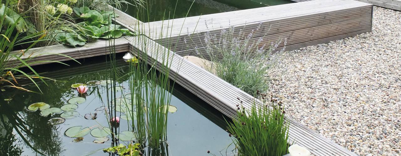 Taman Minimalis Oleh qbus architektur & innenarchitektur Minimalis