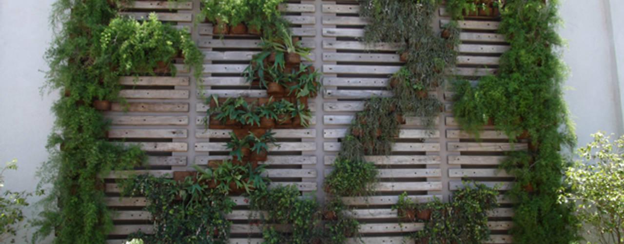 Jardines modernos de Denise Barretto Arquitetura Moderno