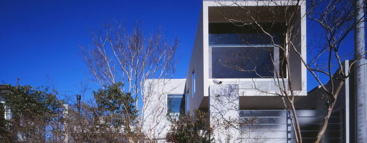 百日紅の家 | RC造高級注文住宅 Mアーキテクツ|高級邸宅 豪邸 注文住宅 別荘建築 LUXURY HOUSES | M-architects モダンな 家