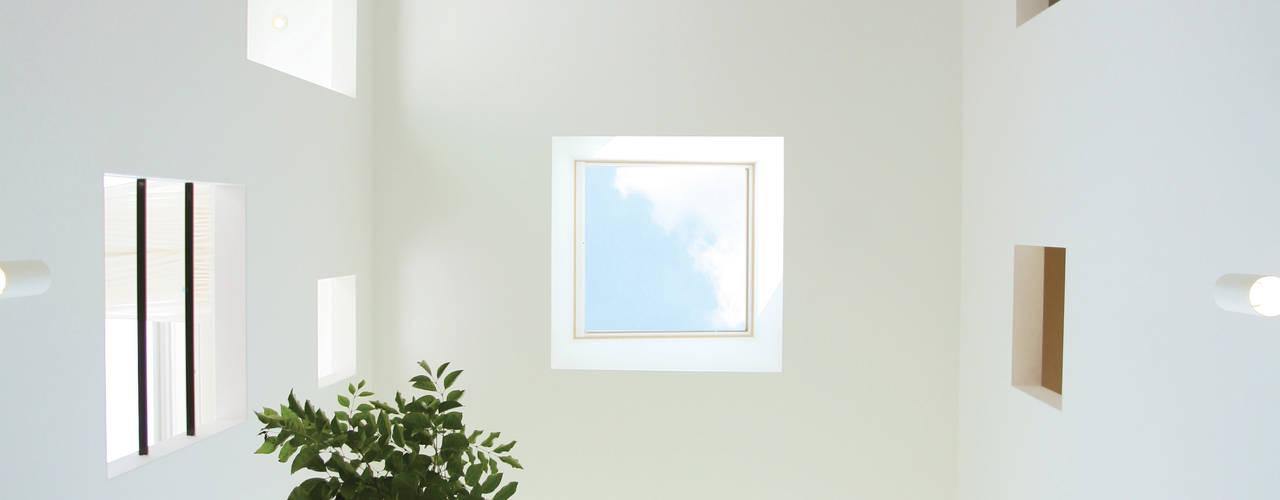 緑を感じる開放的なテラスを屋内で実現する家: スターディ・スタイル一級建築士事務所が手掛けた窓です。,モダン