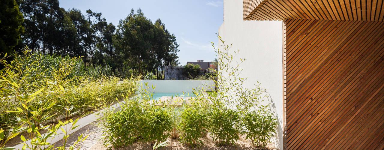 Jardines de estilo  por Joao Morgado - Architectural Photography, Moderno