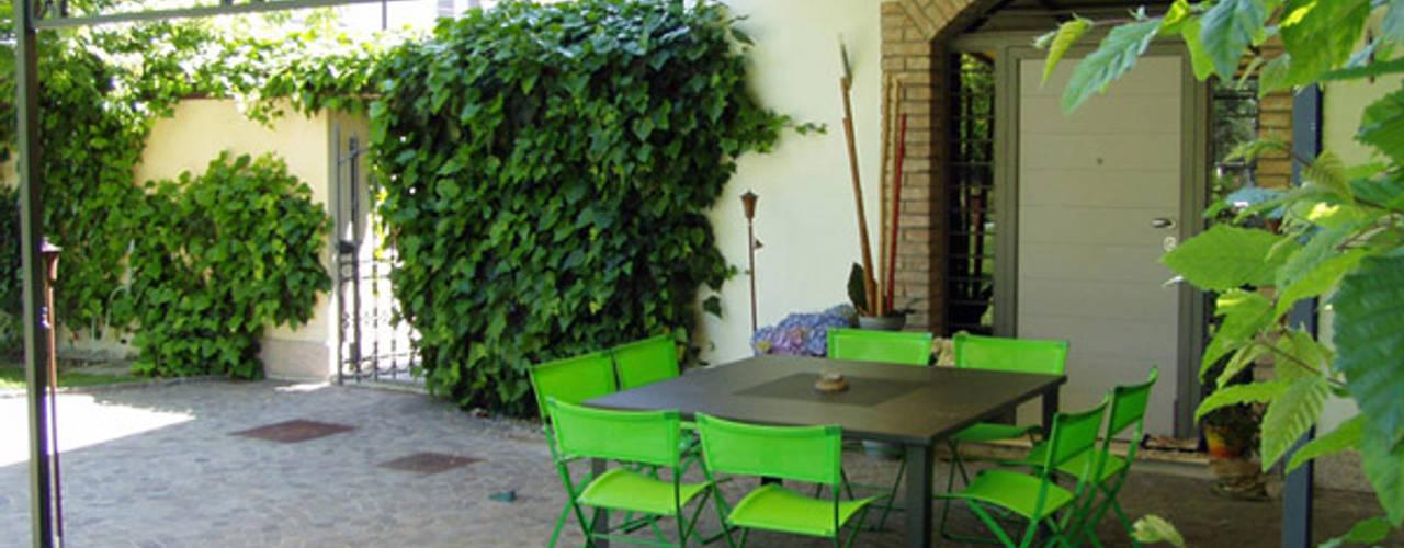 20 piante rampicanti sempreverdi perfette per ogni giardino for Piante sempreverdi per giardino