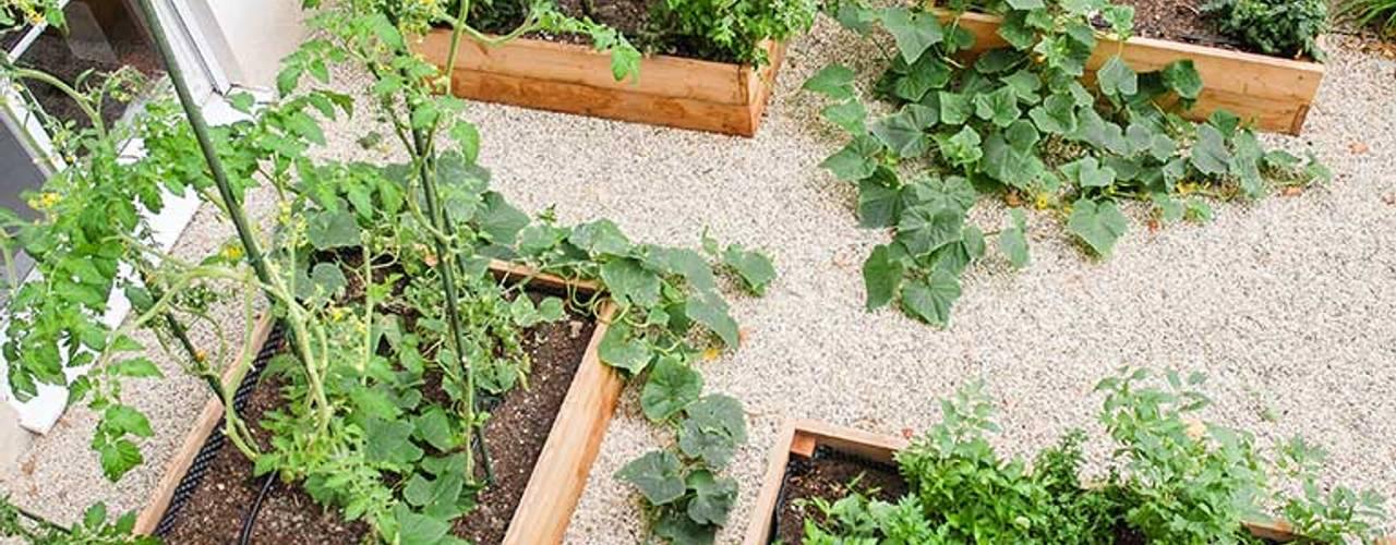 Kräftner Landschaftsarchitektur Mediterranean style garden