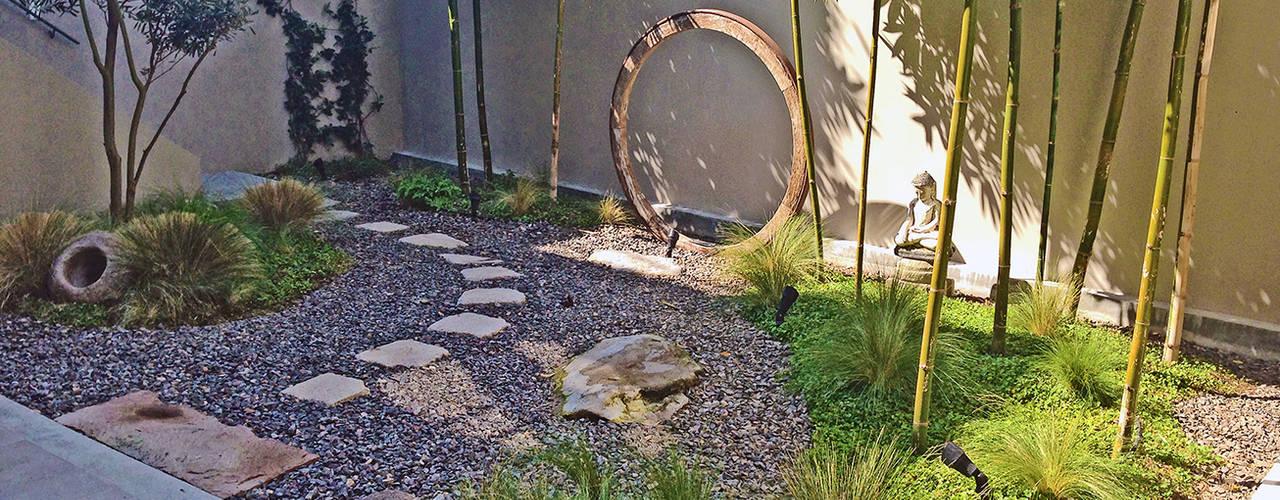 Jardines de estilo  por Terra, Moderno