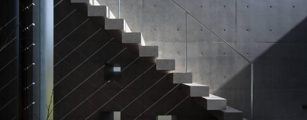 光と遊ぶ家 モダンデザインの テラス の 本田建築設計事務所 モダン