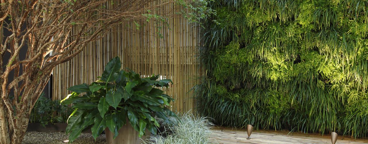 Minimalist style garden by BAMBU CARBONO ZERO Minimalist