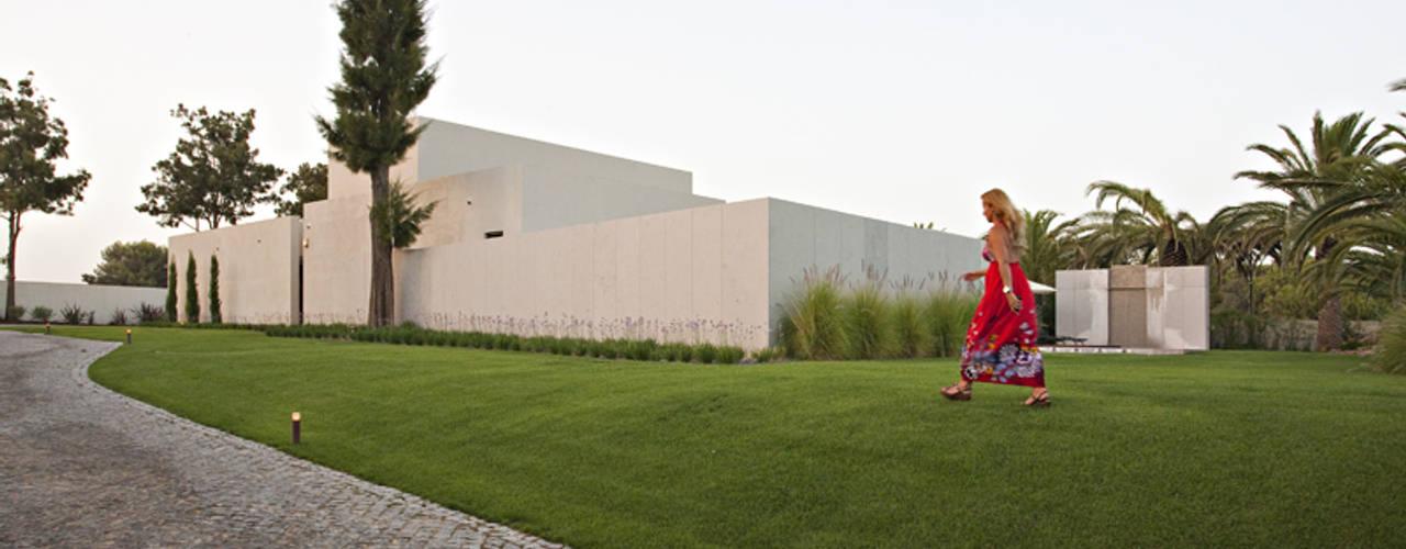 حديقة تنفيذ Susana Camelo