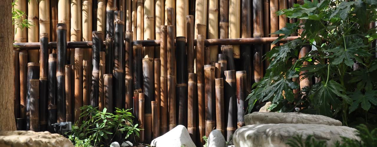 Garten von Taffin, Asiatisch