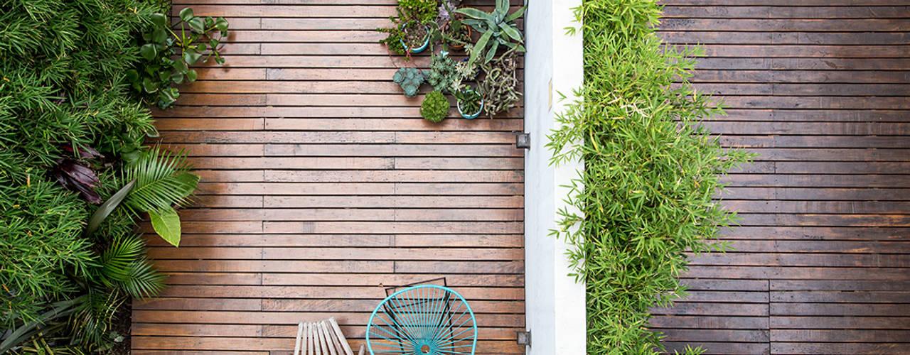 Jardines de estilo moderno de MeMo arquitectas Moderno