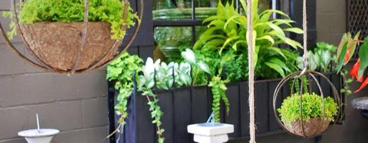 modern  door jardines verticales, Modern