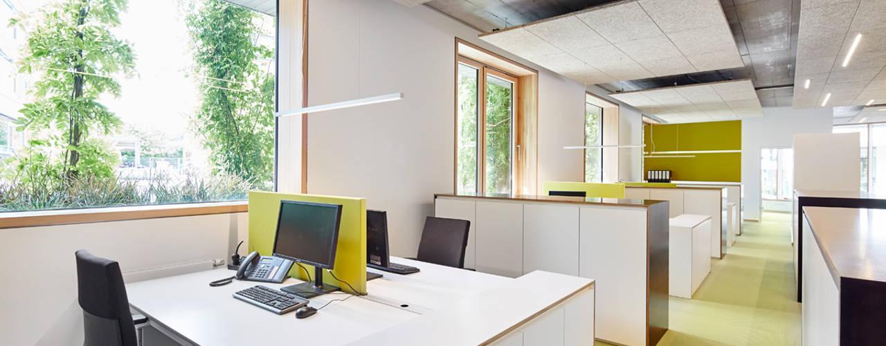 Neue Büroräume für BPD  Immobilienentwicklung GmbH in Freiburg:  Bürogebäude von DOMANI INTERIOR