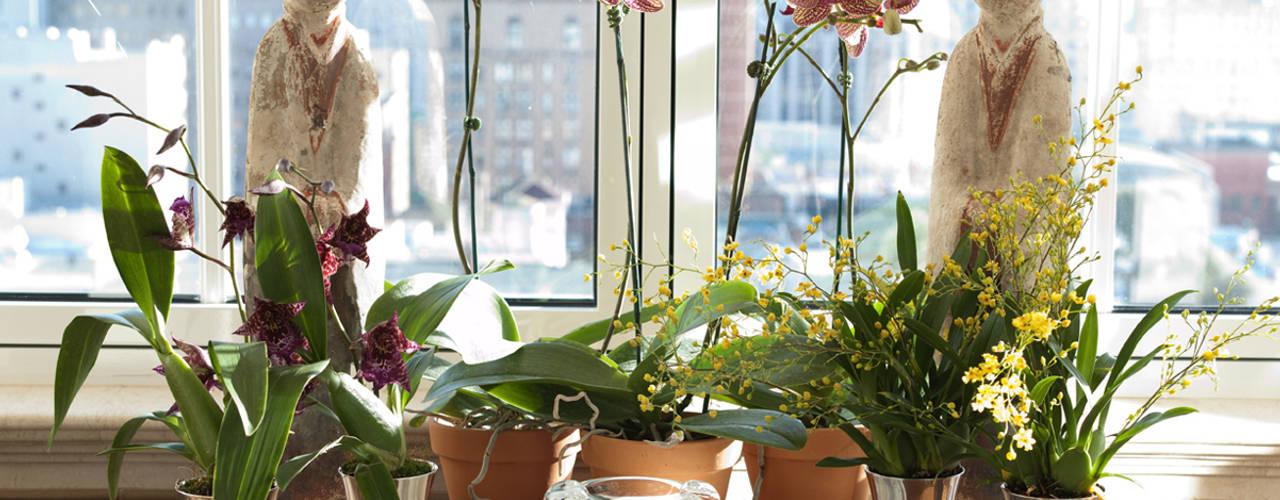 Jardines de invierno de estilo  por Antonio Martins Interior Design Inc